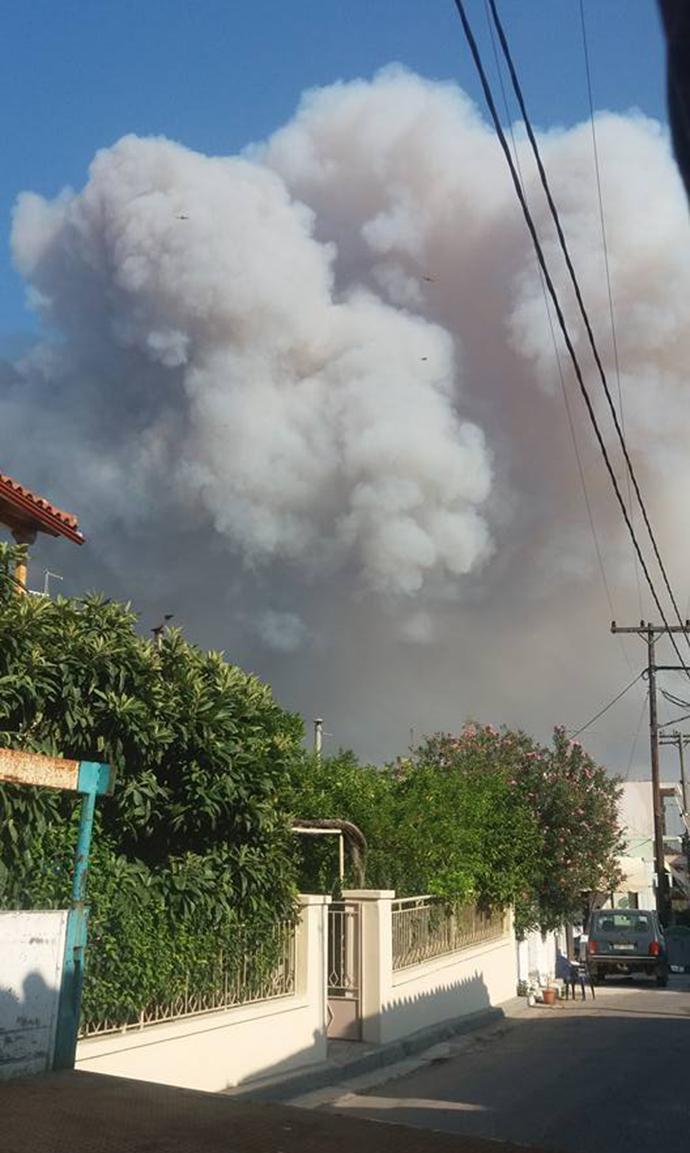 evia4-1000 Πύρινη «κόλαση» στη βόρεια Εύβοια - Εκκενώνονται οικισμοί