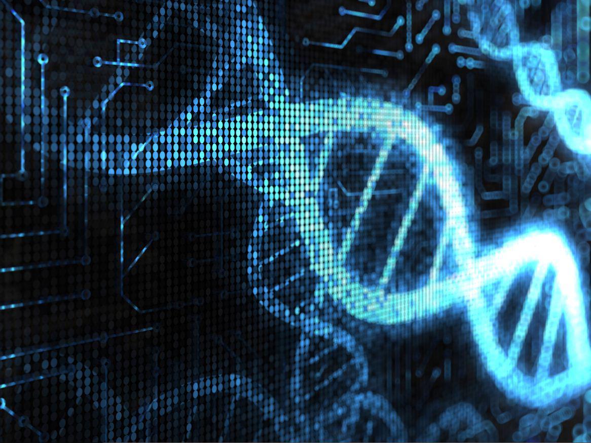 Μίλησε αρχαίο DNA: Αποκαλύπτει ομοιότητες των σημερινών Ελλήνων με όσους ζούσαν το 2.000 π.Χ.