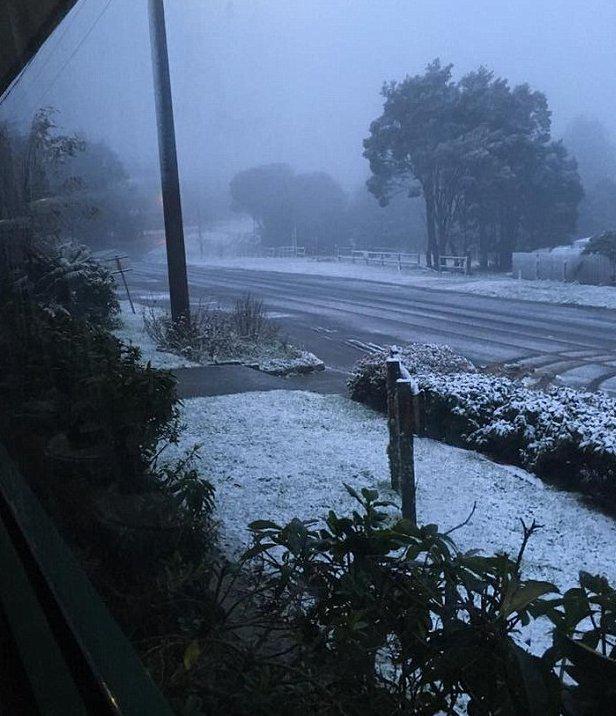 australia-xioni-kalokairi-1300-1 Στην Αυστραλία χιόνισε ένα μήνα πριν το καλοκαίρι [εικόνες]