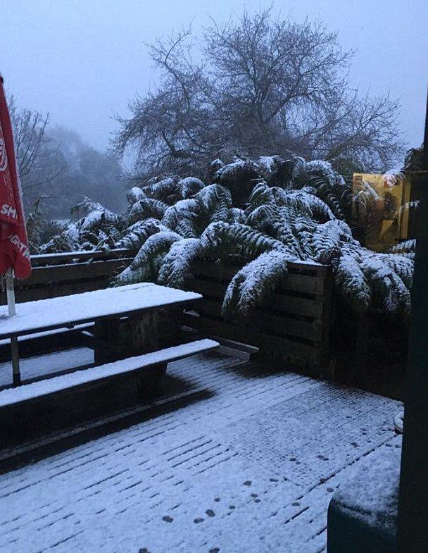 australia-xioni-kalokairi-1300-2 Στην Αυστραλία χιόνισε ένα μήνα πριν το καλοκαίρι [εικόνες]