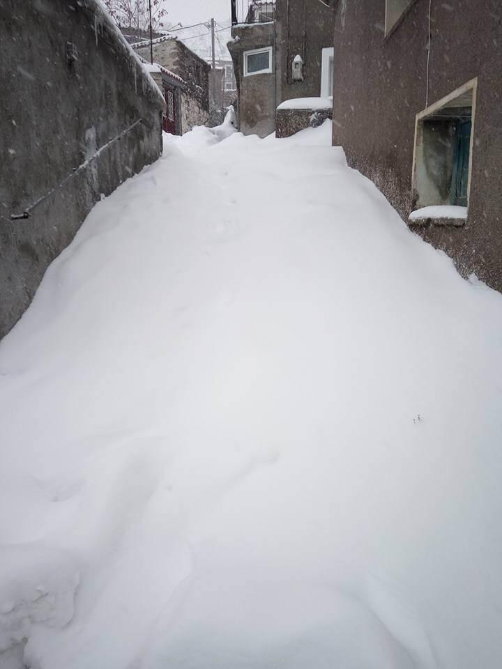 lesvos-xioni- Τραγική κατάσταση στην Αλόννησο  – Πολλά προβλήματα σε όλη την Ελλάδα από τον χιονιά