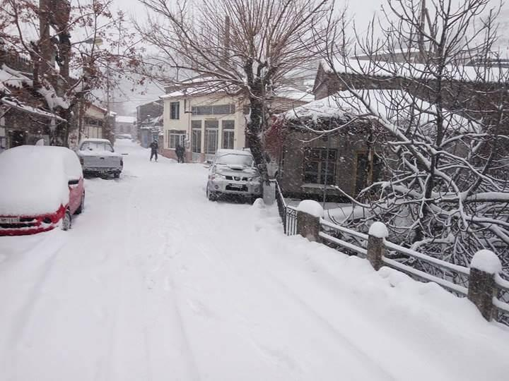 lesvos-xioni3 Τραγική κατάσταση στην Αλόννησο  – Πολλά προβλήματα σε όλη την Ελλάδα από τον χιονιά