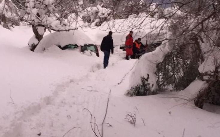 mpakogiannis-kumi-1300-3 Μπακογιάννης: Είχαμε πραγματικά μια βόμβα χιονιού [εικόνες]