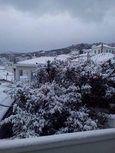 skopelos-xioni-miso-metro-2 Μισό μέτρο χιόνι σε Αλόννησο και Σκόπελο [εικόνες]