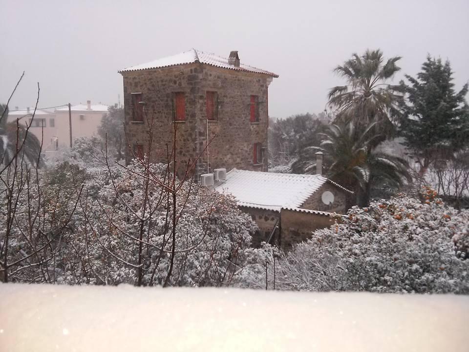 thermi Στα «λευκά» η Μυτιλήνη - Σφοδρή η χιονόπτωση σε όλο το νησί