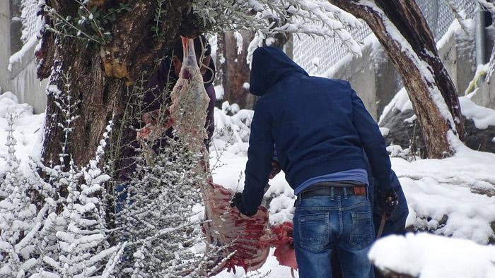 xionia-moria-oprosfuges-apagoreusi-fotografies0-8 Μετά τον σάλο από τις παγωμένες σκηνές, απαγόρευσαν τις φωτογραφίες στην Μόρια!