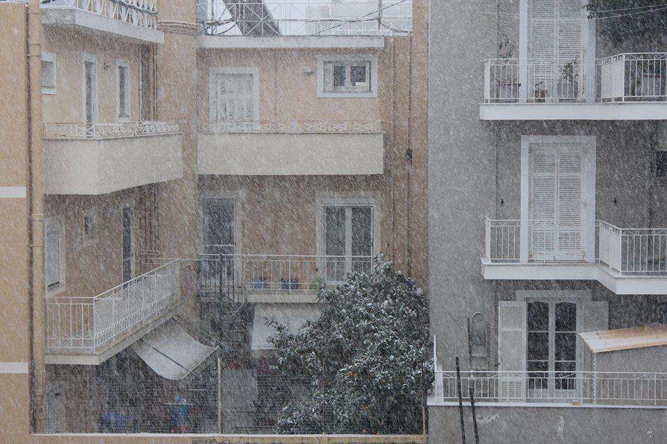 xionia_argostoli-1 Ανυποχώρητος ο χιονιάς - Τρεις νεκροί και τεράστια προβλήματα σε όλη τη χώρα [εικόνες]