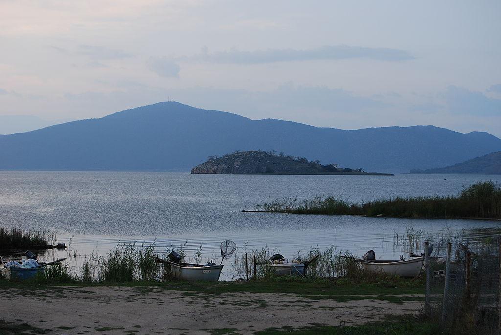mikri-prespa3 Η Ελλάδα και οι υδροβιότοποί της (μέρος α')