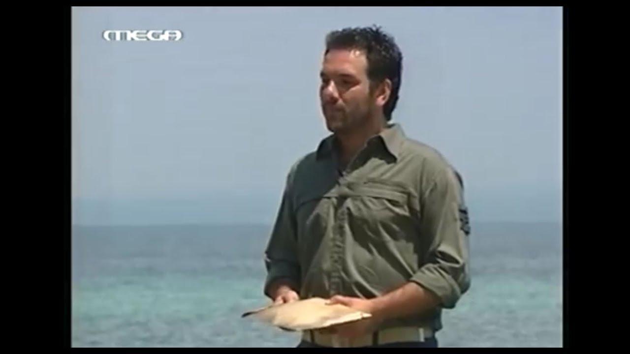 maxresdefault-3 Survivor 2003: Το... άχαστο θηλυκό δίδυμο, ο αχώνευτος finalist, ο ουσιαστικός και ο ηθικός νικητής