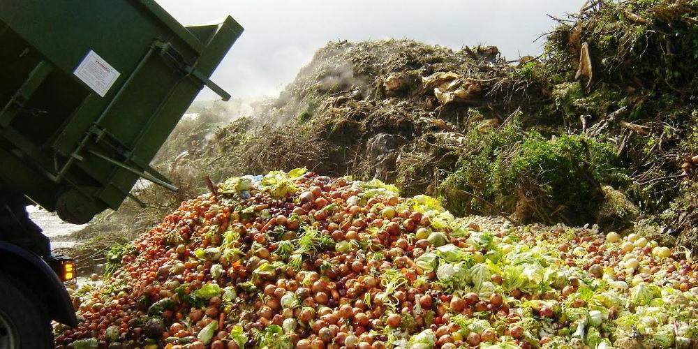 Μια «υπερ-δίαιτα» που θα σώσει τον πλανήτη