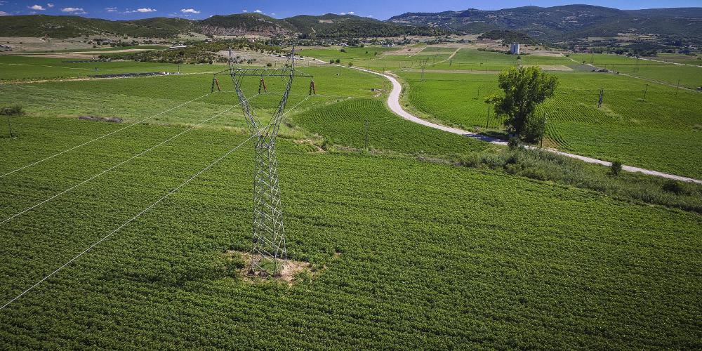 Επιβεβαίωση του «Ε.Τ.»: Επιδοτήσεις χωρίς «ταυτότητα» για τα μισθωμένα χωράφια