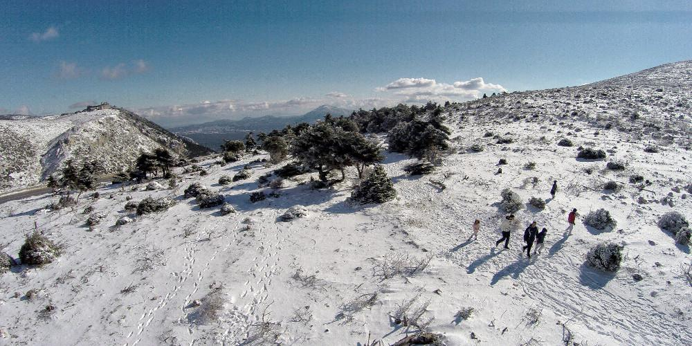 Χιόνια στην Πάρνηθα – Στα «λευκά» από το πρωί