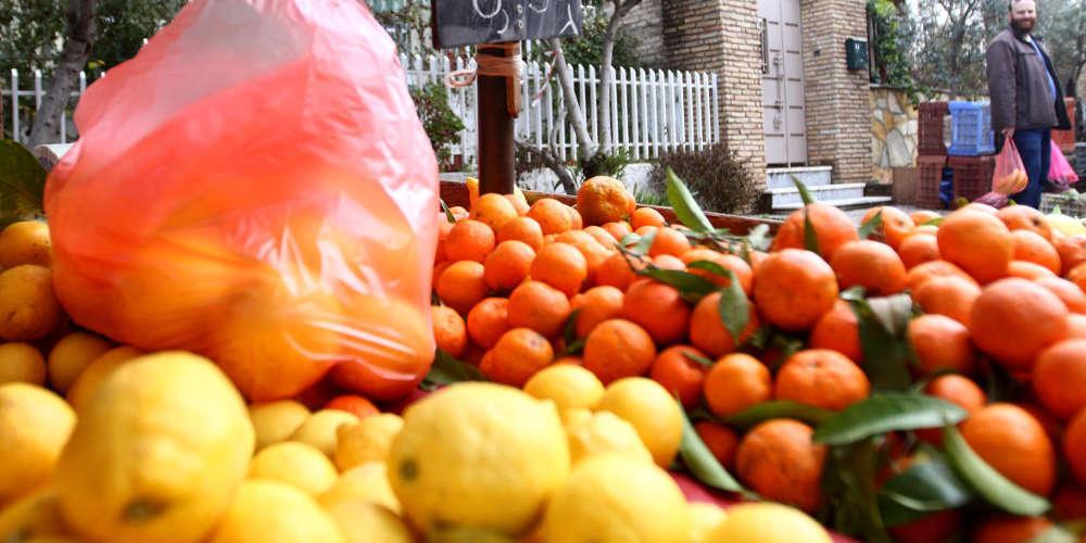 Συναγερμός: Τρόφιμα-δηλητήριο από την Τουρκία κατασχέθηκαν στον Έβρο