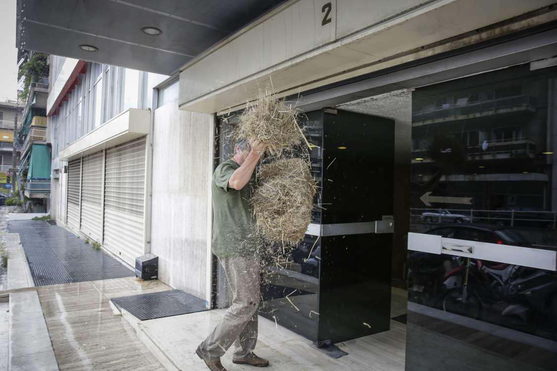 """""""Επίθεση"""" με ...σανό στα γραφεία των ΑΝ.ΕΛ. στην Αθήνα"""