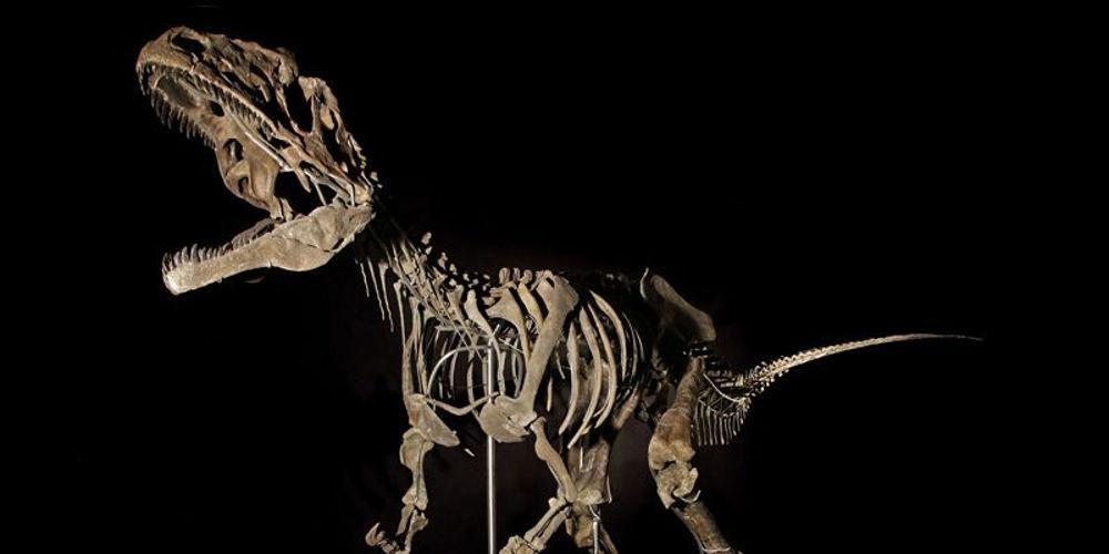 Δεινόσαυροι και… business: Σκελετός πουλήθηκε για 2,3 εκατ. δολαρίων στο Παρίσι