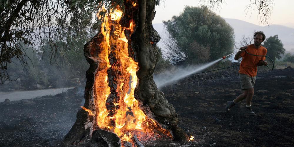 Σε εξέλιξη πυρκαγιές σε Πάρο, Εύβοια και Ζάκυνθο