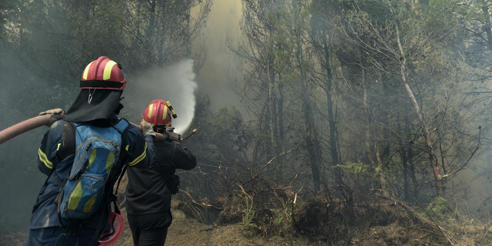 Υπό μερικό έλεγχο η πυρκαγιά στα Φάρσαλα – Κάηκαν 300 στρέμματα δάσους