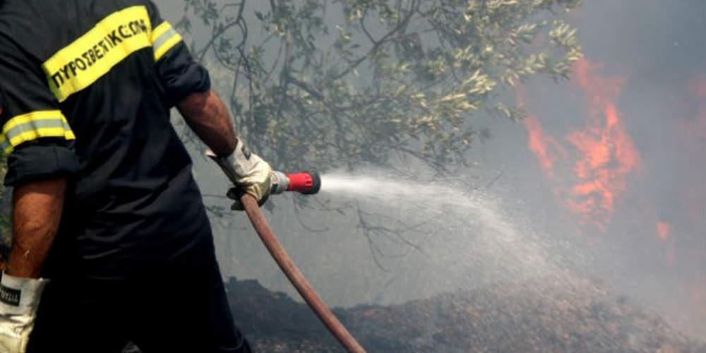Νέα τραγωδία στη Μάνη: Γυναίκα κάηκε προσπαθώντας να κάψει κλαδιά στο χωράφι της