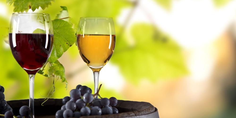 Ρύθμιση - ανάσα για τους οινοπαραγωγούς: Επιστρέφεται ο προκαταβληθείς ΕΦΚ για το κρασί