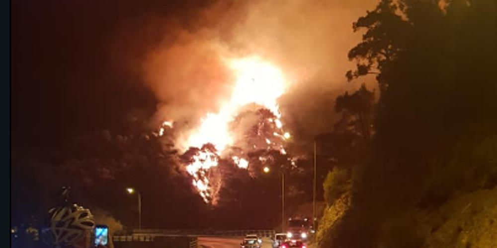 Ανεξέλεγκτη μαίνεται η φωτιά σε πευκοδάσος στην Σάμο