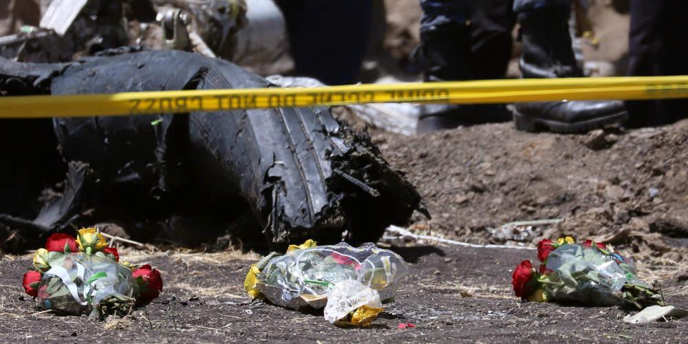 Ένα… πουλί φέρεται πως κατέστρεψε τον αισθητήρα του μοιραίου Boeing στην Αιθιοπία