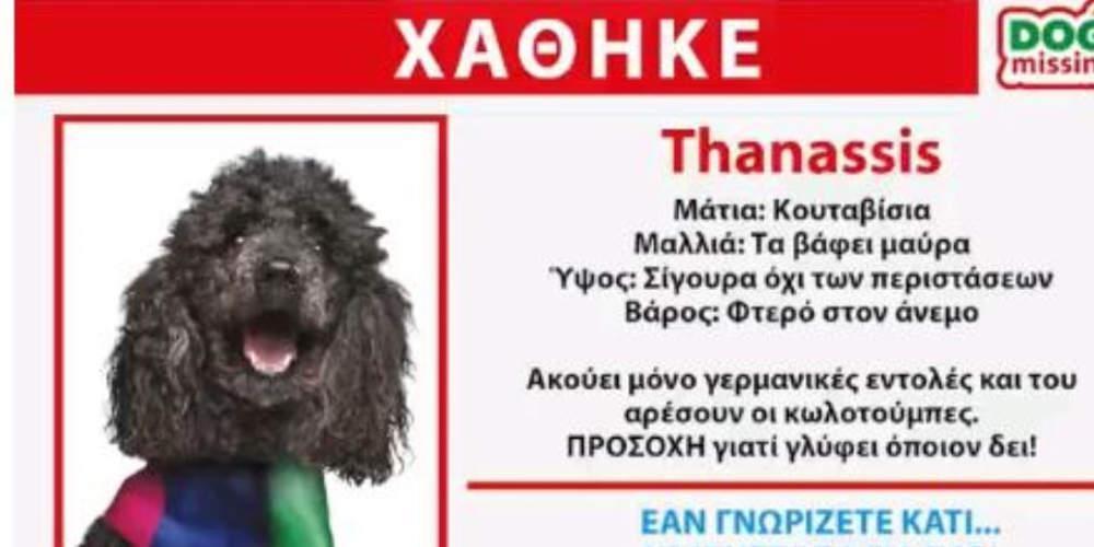 Ο Thanassis… χάθηκε: Το νέο σποτ των Ανεξάρτητων Ελλήνων [βίντεο]