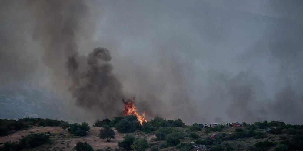 Πυρκαγιά σε εξέλιξη σε δασική έκταση στο Μαρτίνο Φθιώτιδας