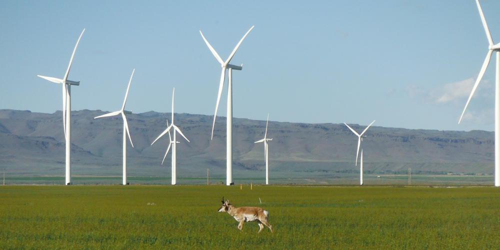 ΤΕΡΝΑ Ενεργειακή: Σημαντική ενίσχυση του χαρτοφυλακίου αιολικών πάρκων του Ομίλου στις ΗΠΑ
