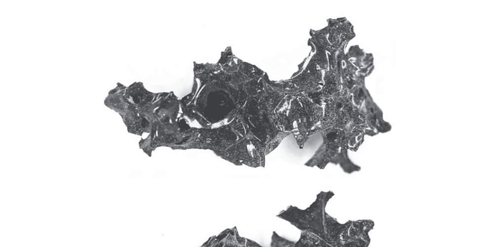 Απίστευτο: Έκρηξη του Βεζούβιου μετέτρεψε εγκέφαλο άνδρα σε… γυαλί