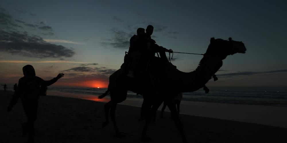 Ανήκουστο: Αμερικανίδα τουρίστρια έκανε μήνυση στην TripAdvisor επειδή έπεσε από καμήλα
