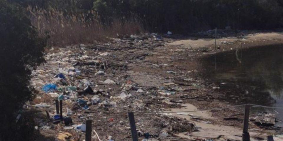 Εικόνες από... Ινδία στη Χαλκιδική: Παραλία μετατράπηκε σε σκουπιδότοπο