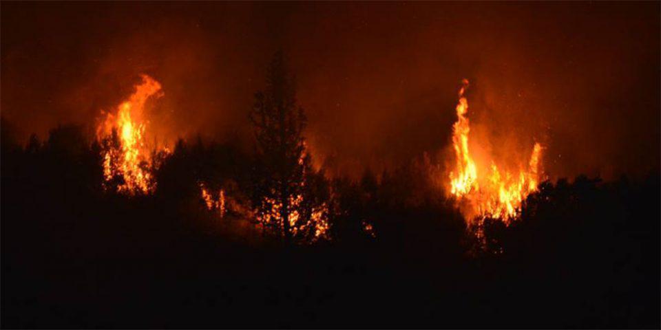 Ζάκυνθος: Ολονύχτια μάχη με τις φλόγες - Εκκενώθηκε το χωριό Μαριές με εντολή Χαρδαλιά