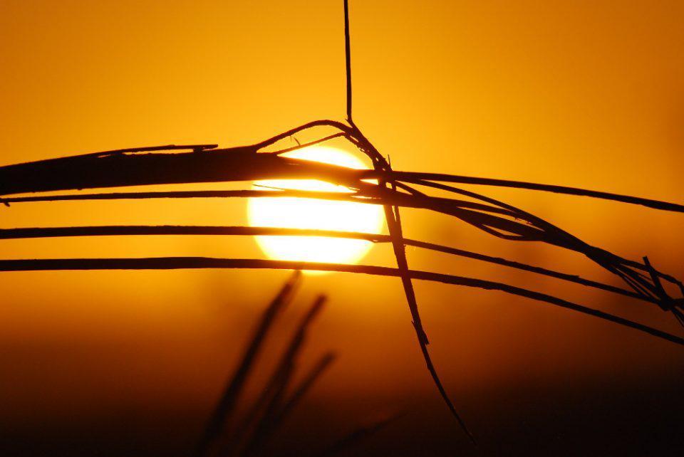 «Ενώπιον» του ήλιου δεν είμαστε όλοι ίσοι…