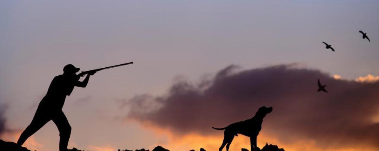Χωρίς τέλη και τις εισφορές υπέρ του Δημοσίου συνοδεύεται η φετινή ρυθμιστική απόφαση για το κυνήγι