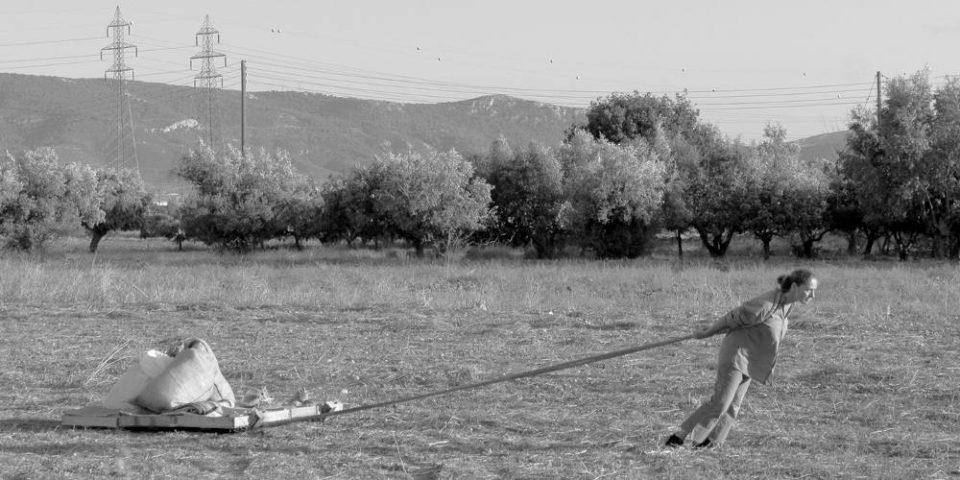 Τέχνη στο αγρόκτημα! Η εικαστικός Αιμιλία Μπουρίτη συνδέει τον πολιτισμό με την αγροτική ζωή