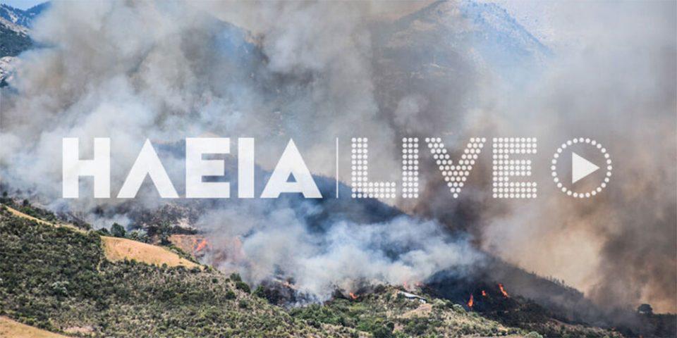 Φωτιά στην Ωλένη Ηλείας: Ενισχύονται οι δυνάμεις – Ισχυροί άνεμοι στην περιοχή