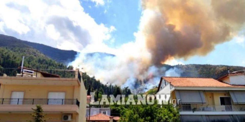 Σε εξέλιξη μεγάλη φωτιά στην Αταλάντη - Κοντά σε σπίτια οι φλόγες