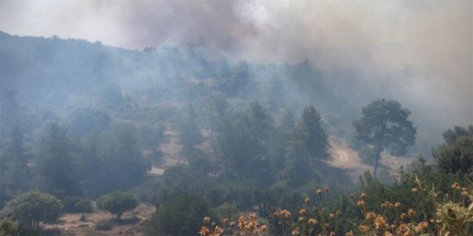 Σε εξέλιξη μεγάλη φωτιά στην Κύπρο - Σε μήκος 20 χλμ. εκτείνεται το πύρινο μέτωπο