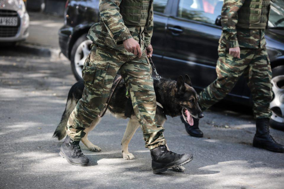 Καλούνται για «κατάταξη» στις Ένοπλες Δυνάμεις 193 στρατιωτικοί σκύλοι
