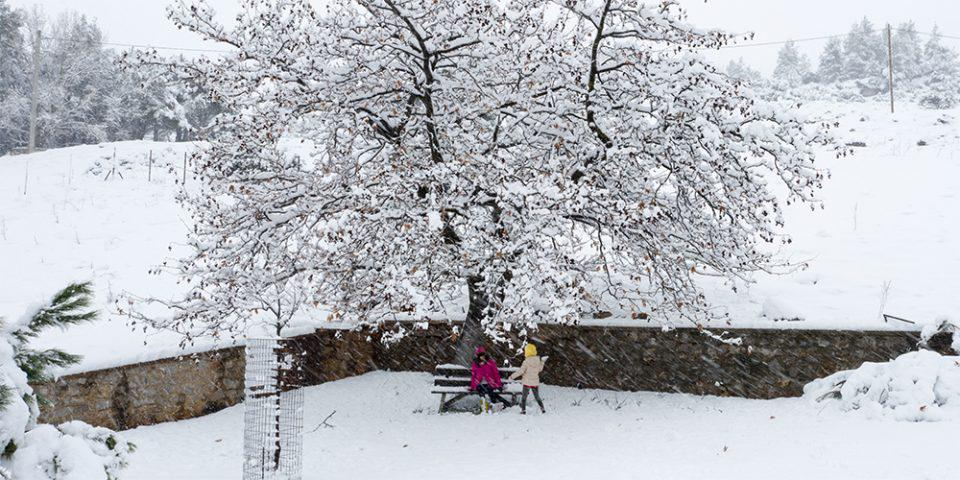 Καιρός: Καταφθάνει η κακοκαιρία «Μήδεια» - Πτώση θερμοκρασίας και χιόνια σήμερα Σάββατο
