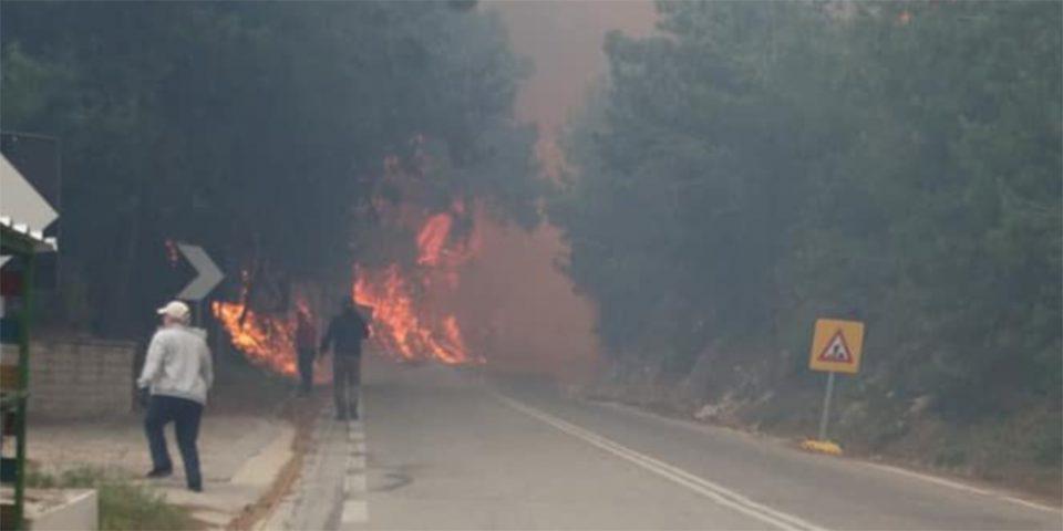 Σε εξέλιξη φωτιά στη Σάμο - Μεγάλη επιχείρηση της Πυροσβεστικής