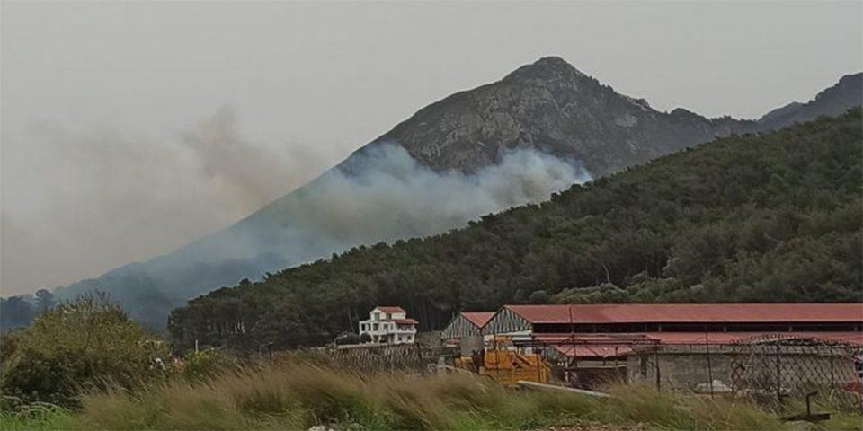 Σάμος: Σε ύφεση η πυρκαγιά που ξέσπασε το μεσημέρι του Σαββάτου