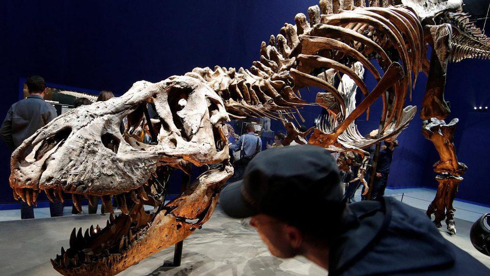 τυραννόσαυροι