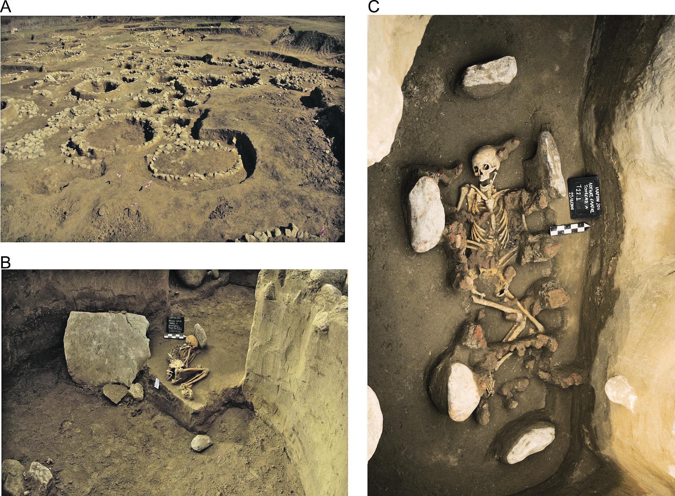 Το ελληνικό DNA είναι 4.000 ετών – αυτό που αποκαλύπτει η επιστημονική έρευνα