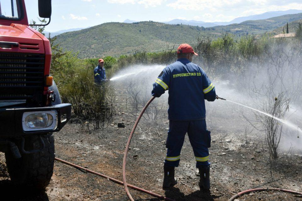 Φωτιά στην Καστοριά – «Φουντώνει» το μέτωπο, ενισχύονται οι δυνάμεις