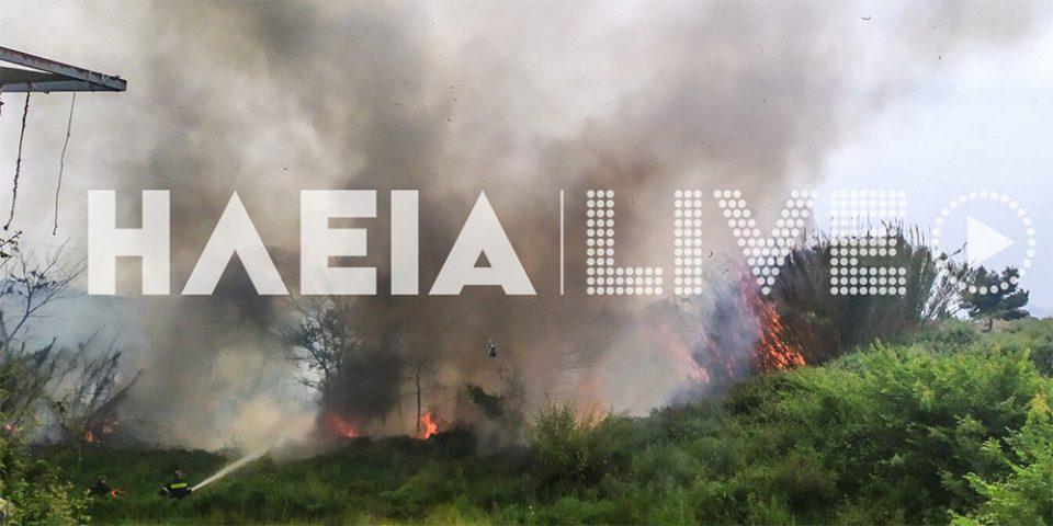 Υπό μερικό έλεγχο η φωτιά στην εθνική οδό Πύργου - Αρχαίας Ολυμπίας