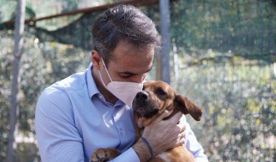 Νομοσχέδιο για ζώα συντροφιάς- Μητσοτάκης: «Γενναία βήματα στην προστασία των μικρών μας φίλων»