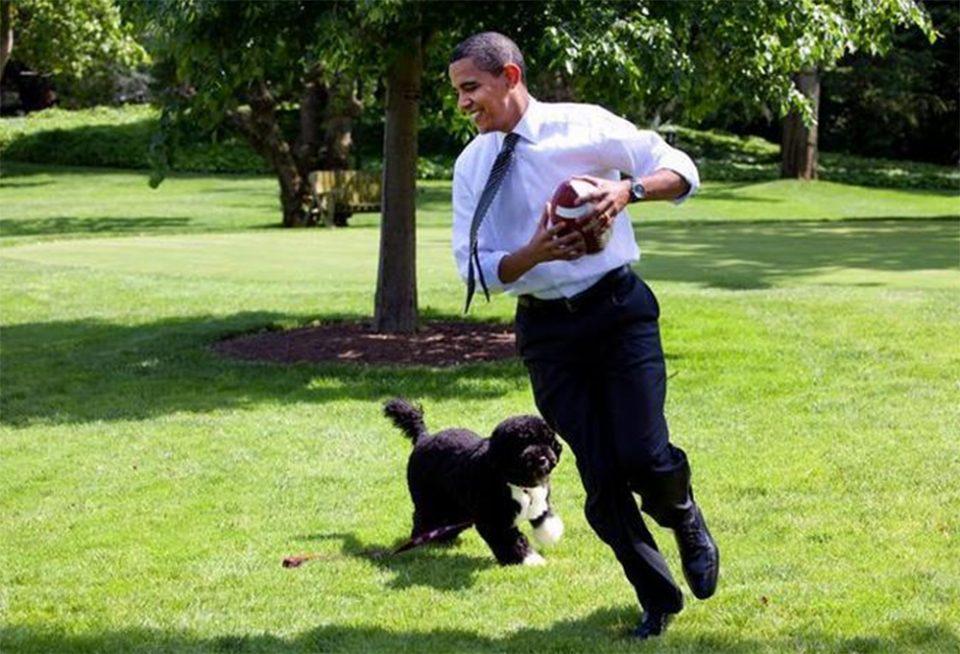 Πέθανε ο Μπο, ο σκύλος του Μπαράκ Ομπάμα και σταρ του Λευκού Οίκου