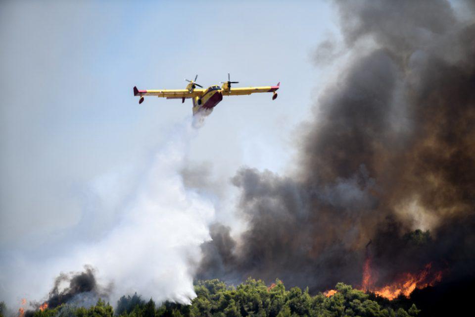 Χαρδαλιάς: Με 69 εναέρια μέσα οι φετινές μάχες με τις πυρκαγιές