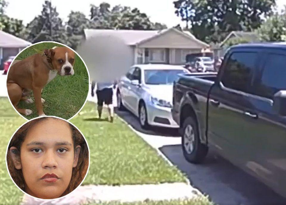 Τέξας: Ήθελε να πυροβολήσει τον σκύλο του γείτονα και πυροβόλησε τον γιο της